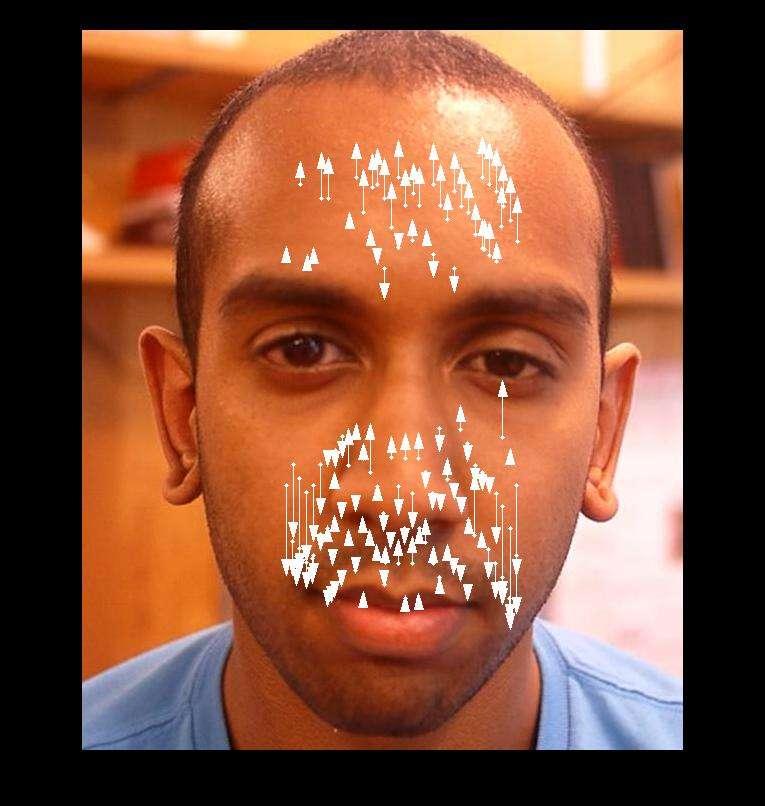 Pour prendre le pouls d'une personne à partir des mouvements de la tête, l'algorithme développé au MIT sélectionne entre 500 et 1.000 points de repère répartis autour de la bouche, du nez et du front. Il évite les yeux, dont le clignement viendrait perturber le signal. © MIT, CSAIL