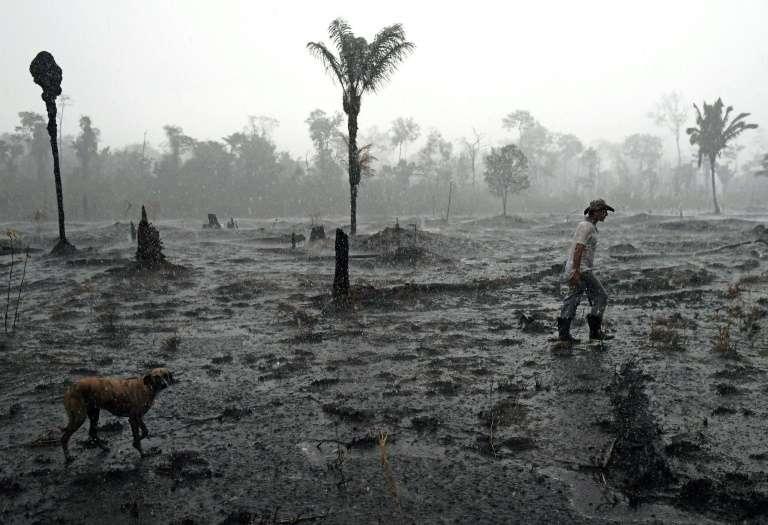 Le fermier brésilien Helio Lombardo Do Santos dans un secteur brûlé de la forêt amazonienne près de Porto Velho (nord-ouest du Brésil), le 26 août 2019. © Carl de Souza, AFP, Archives