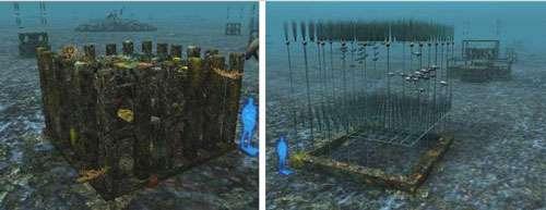 Représentation des différents types de récifs en 3D. © PIXXIM/Ville de Marseille - Tous droits réservés