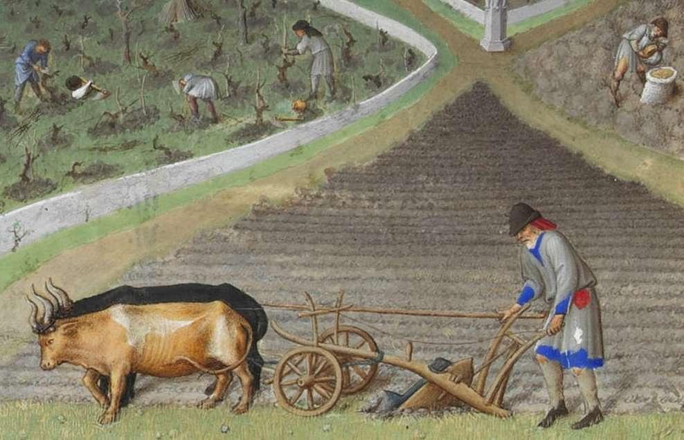 Au Moyen Âge, le paysan était taillable et corvéable. © Wikimedia Commons, domaine public