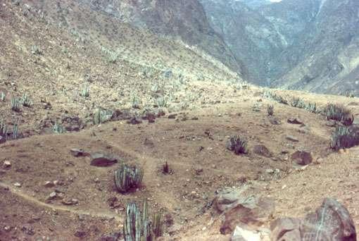 Figure 16 : entrée et partie basse du site de Checta. © J. Guffroy, reproduction et utilisation interdites