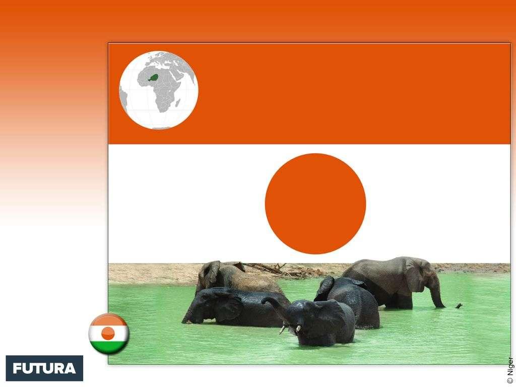 Drapeau : Niger