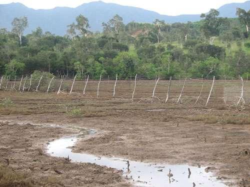 L'appropriation des tannes et des mangroves par des particuliers, comme ici à Païta en Nouvelle-Calédonie, s'est généralisé, au mépris de la législation © JM Lebigre Reproduction et utilisation interdites