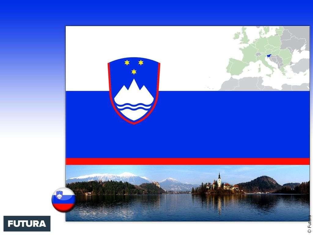 Drapeau : Slovénie