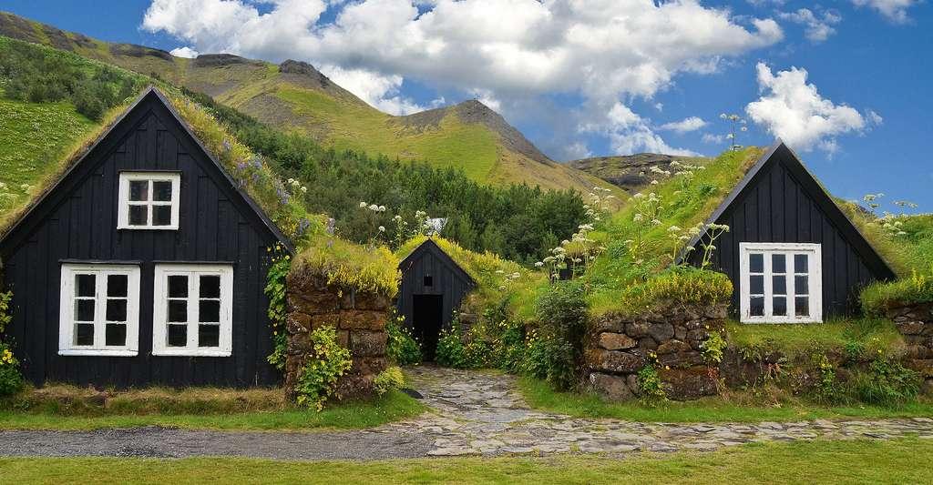 Les très jolies maisons aux toits végétalisés d'Islande. © ReneBoinski/abogawat, Pixabay, DP
