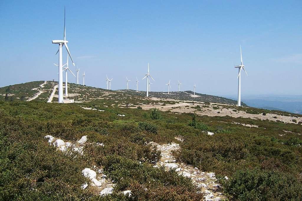 Éoliennes dans l'Aude. © Zewan, CC by 2.5