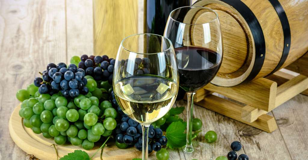 Vin blanc et rouge de Bourgogne. © Photo-Mix, Pixabay, DP