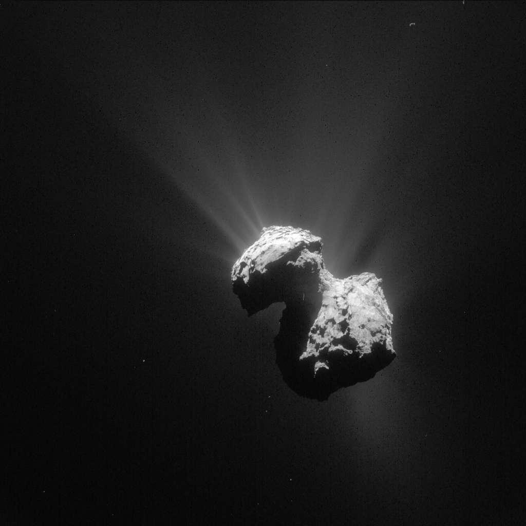 Le noyau de Tchouri, le 7 juillet, soit deux jours avant le dernier contact en date de Philae avec Rosetta. L'atterrisseur se cache dans un recoin du plus petit lobe, mal ensoleillé jusqu'à récemment. L'ensoleillement est cependant en train de changer avec le rapprochement de la comète du Soleil. © Esa, Rosetta, NavCam, CC by-sa igo 3.0