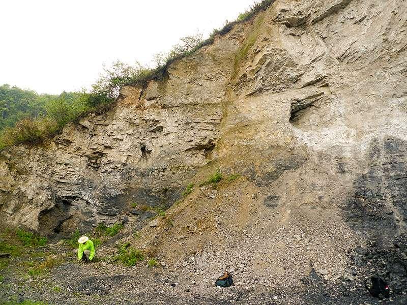 La formation de Doushantuo où ont été mis au jour les fossiles se distingue dans cette carrière, en partie inférieure, par la couleur noire de ses schistes riches en matière organique, en comparaison de la formation de Dengying, en partie supérieure, composée d'une roche sédimentaire carbonatée plus claire, la dolomie. © sqfp.info, Wikimedia Commons, cc by 2.0
