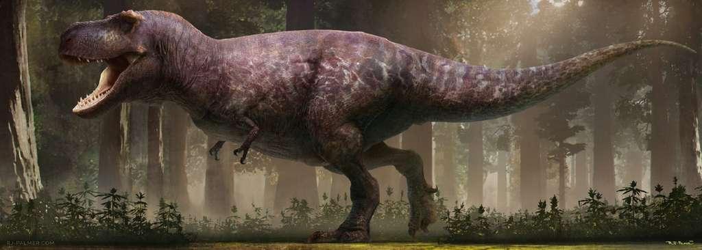 Une équipe de paléotonlogues et d'artistes viennent de refaire une beauté au T-Rex. Voici à quoi il devait ressembler selon eux. © RJ Palmer