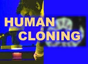 Le clonage humain n'est pas accueilli de la même façon dans tous les pays. © DR