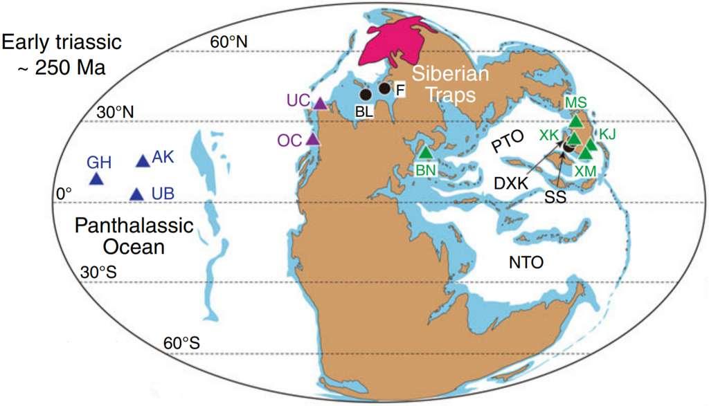 Carte du monde au commencement du Trias (250 millions d'années), peu après la crise permienne (252 millions d'années). Les trapps de Sibérie figurent en rose, au nord de la Pangée à l'époque. Les triangles bleus, mauves et verts représentent les dix sites échantillonnés pour cette étude. Les différentes couleurs indiquent qu'ils proviennent de milieux ou de lieux géographiques différents, le bleu étant utilisé par exemple pour les sédiments issus des profondeurs abyssales de l'océan global Panthalassa entourant le supercontinent. Les points noirs marquent des sites analysés dans des recherches antérieures. Le pic de mercure aux environs de la limite Permien-Trias est observé pour tous ces sites. © Jun Shen et al., Nature Communications, 2019