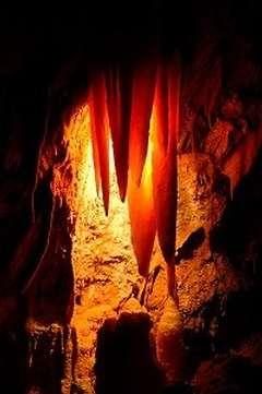 Les grottes de Jenolan sont âgées de 340 millions d'années Un record sans précédent ! (Crédits : Jenolan Caves Trust)