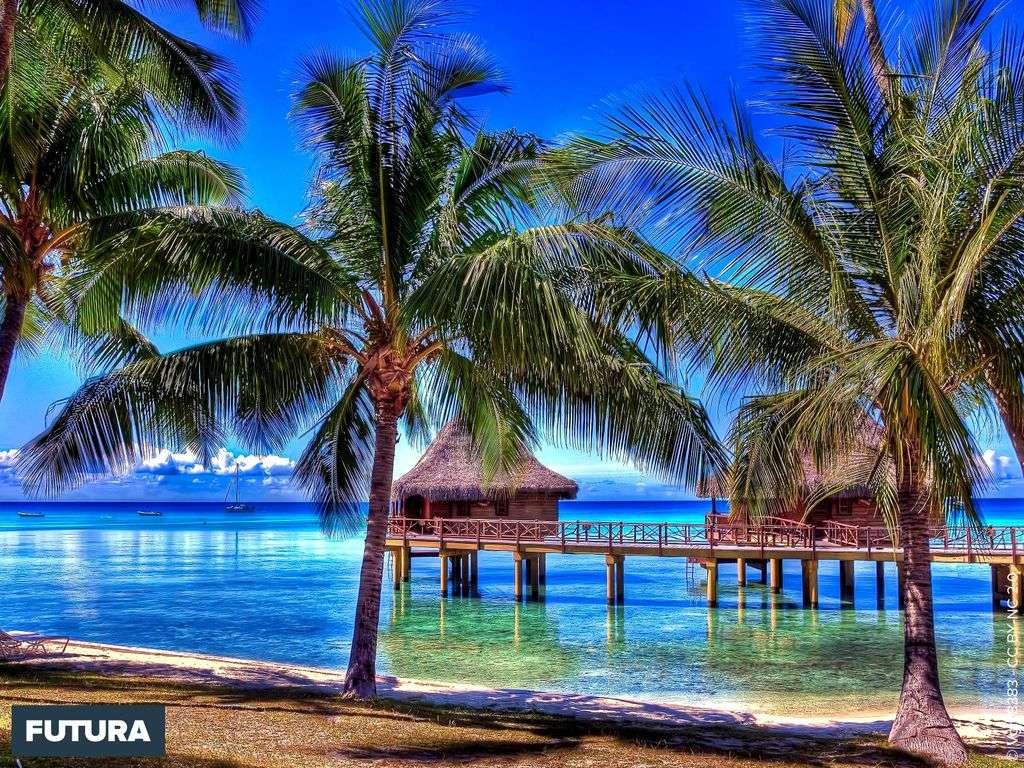 Fond D Ecran Paysage De Polynesie