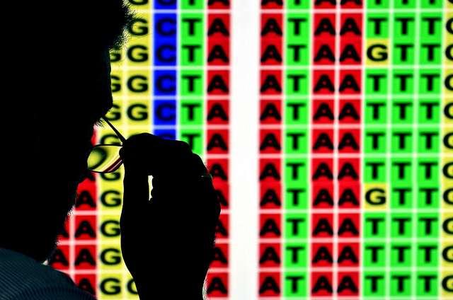 La très grande sensibilité d'une fillette au virus de la grippe s'expliquerait par la présence de deux versions modifiées d'un de ses gènes. © CIAT, Flickr, CC BY NC SA 2.0