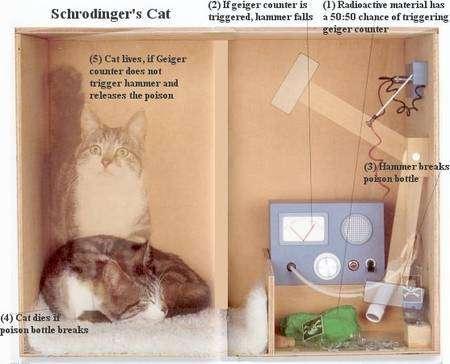 L'expérience du chat de Schrödinger. Soit un chat enfermé dans une boîte en compagnie d'un atome radioactif, donc susceptible de se désintégrer. Selon la mécanique quantique, il faut traiter l'objet macroscopique, c'est-à-dire le chat, comme constituant un seul objet quantique avec l'atome, à cause d'un phénomène appelé l'intrication quantique. Or, d'après les lois de la mécanique quantique, l'atome doit se retrouver dans une superposition d'états. Il peut ainsi, simultanément, se désintégrer ou pas. Seul un observateur cherchant à savoir si la désintégration a bien eu lieu provoquerait le passage dans l'un ou l'autre de ces deux états. Ajoutons un compteur Geiger dans la boîte, capable de déclencher le mouvement d'un marteau brisant une fiole contenant du cyanure en cas de désintégration de l'atome, on aboutit à une conclusion étonnante : tant qu'un observateur n'ouvre pas la boîte pour observer le chat de l'expérience de pensée proposée par Schrödinger, ce dernier est quantiquement dans une superposition d'états, à la fois vivant et mort ! Crédit : universe-review