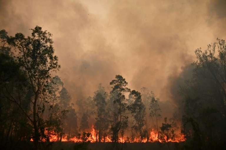 Un feu de brousse à Bobin en Australie, le 9 novembre 2019. © Peter Parks, AFP
