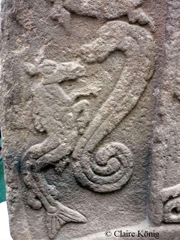 Détail d'un hippocampe sur une pierre picte, à Easter Ross Meigle. © Claire König, DR