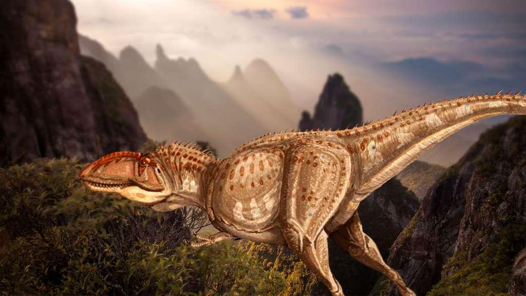 Giganotosaurus ou Giganotosaure, l'un des plus grands dinosaures
