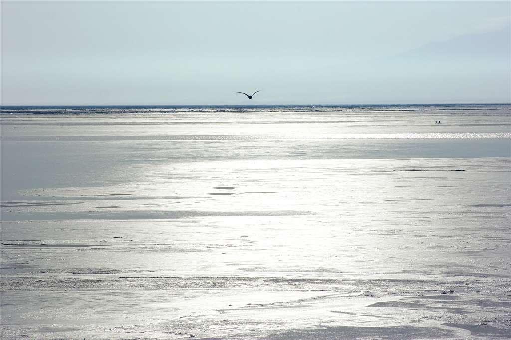 Réchauffement climatique : quelles sont les conséquences sur le niveau de la mer ? © Janne M, Flickr CC by-NC-SA 3.0