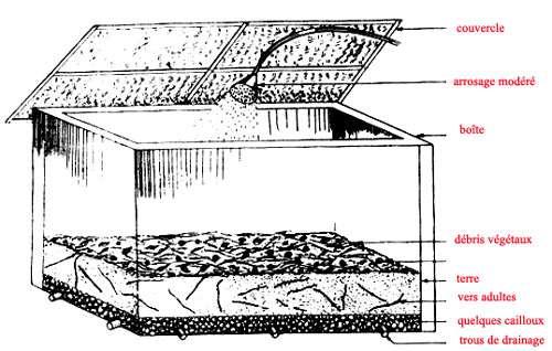 Schéma de vermicompost réalisable à la maison