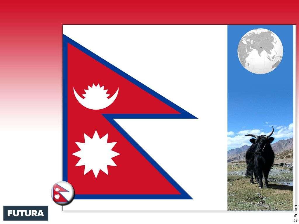 Drapeau : Népal