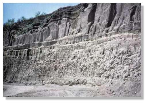 Dépôt chaotique formé par les nuées ardentes à Pozelle au sud du Vésuve (la personne au centre du dépôt donne l'échelle). On y trouve des blocs de lave de plus de 3mètres de diamètre ainsi que des blocs de calcaire arrachés par l'avalanche. © Cliché Sigurdsson et al, 1985