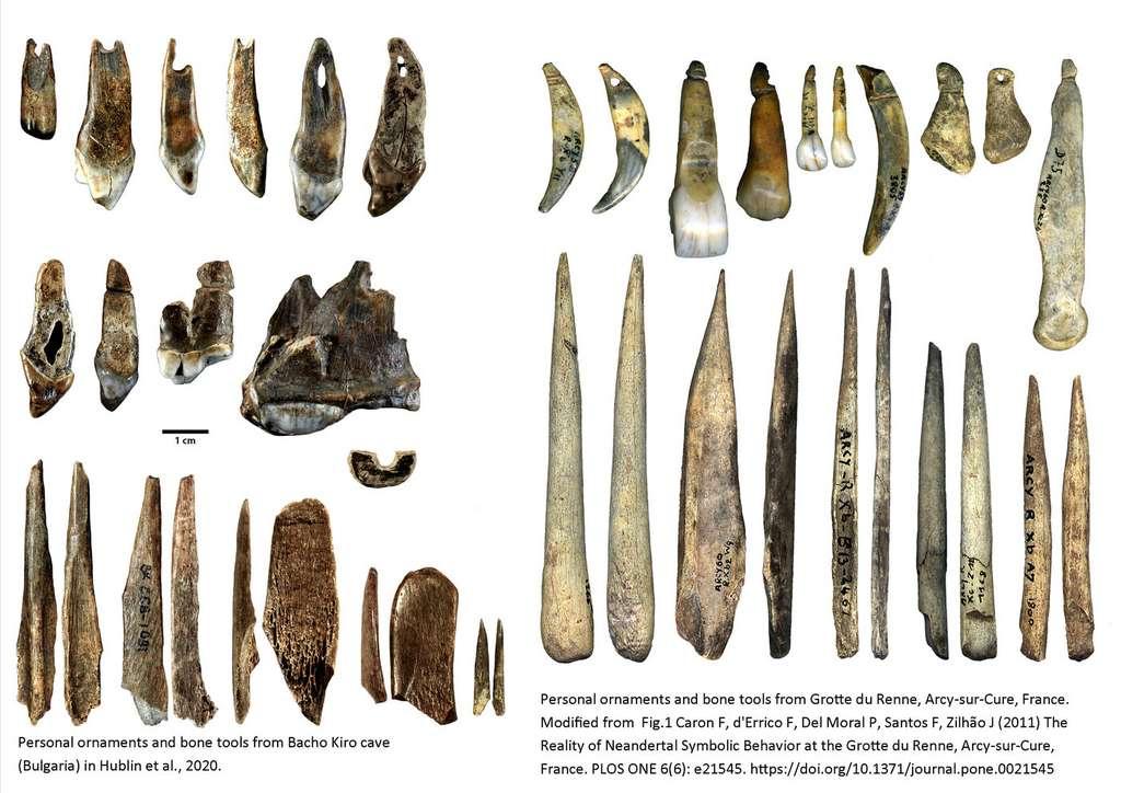 Ornements personnels et outils en os de la grotte Bacho Kiro (à gauche) et de la grotte du Renne (France, à droite). Les artefacts de la grotte de Bacho Kiro sont attribués à l'Homo sapiens et datent d'environ 45.000 ans. Les artefacts de la Grotte du Renne sont attribués aux Néandertaliens et ne sont pas aussi vieux. © Rosen Spasov et Geoff Smith, CC by-sa 2.0