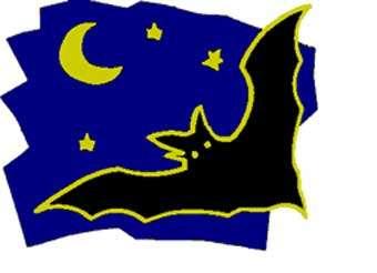 Logo Nuit des chauves-souris.