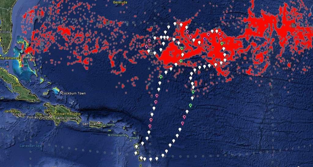 La route du navire durant les trois semaines de l'expédition. Les puces de couleur indiquent les endroits où seront prises des images par satellite, dans le domaine visible avec Pléiades (balises roses) et par radar avec TerraSAR-X (en vert), ou les deux (en violet). © Expédition 7e continent, 2014