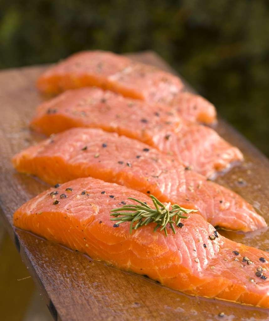 Des bons filets provenant de saumons OGM AquAdvantage® seront probablement bientôt dans les assiettes des consommateurs américains. © AquaBounty