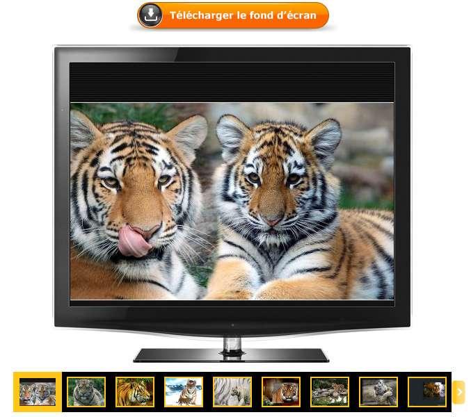 Télécharger en un clic votre fond d'écran. La pellicule vous permet de naviguer dans les différents fonds d'écran d'une catégorie.