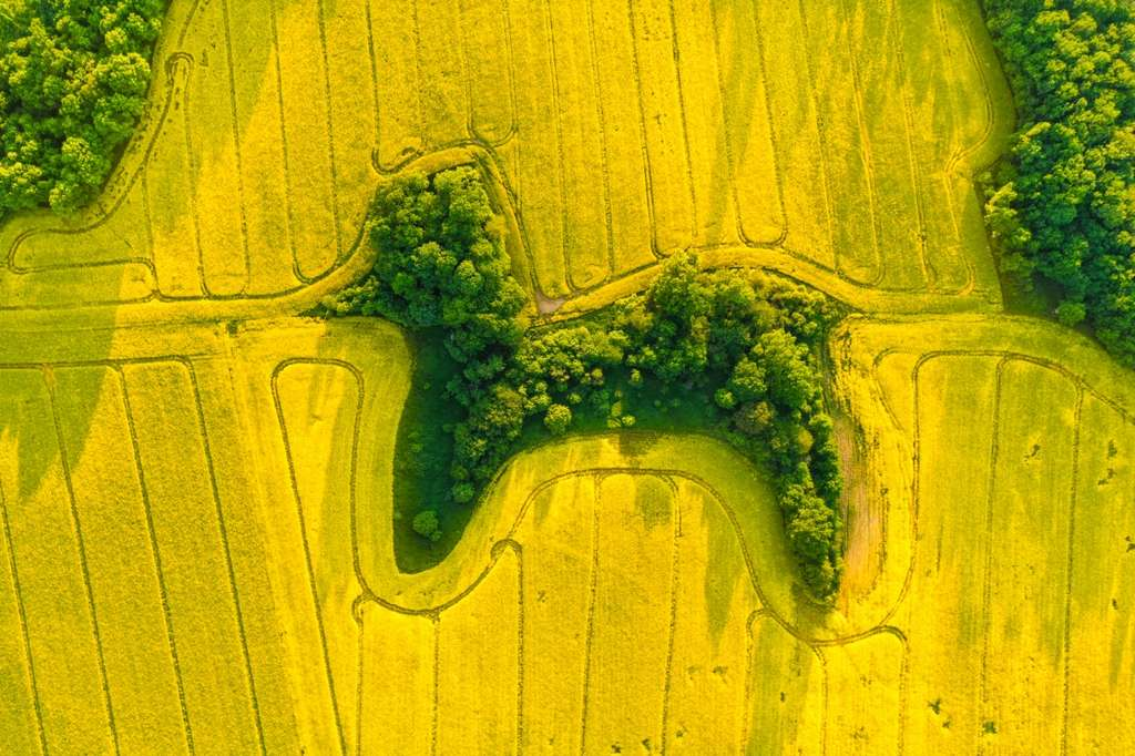 Pays : Pologne - Photographe : Jan Ulicki. © Drone Photo Awards 2021