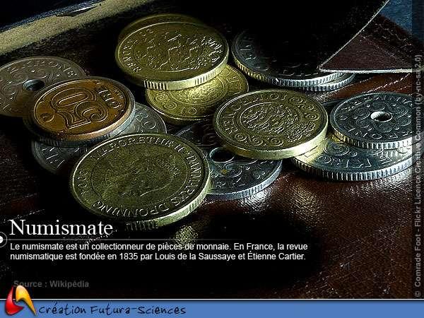 Numismate - Pièces de monnaie