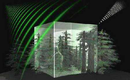 Biomass : un radar à synthèse d'ouverture (SAR) va analyser depuis l'orbite terrestre l'épaisseur de la végétation arborée des hautes latitudes. Crédit Cesbio