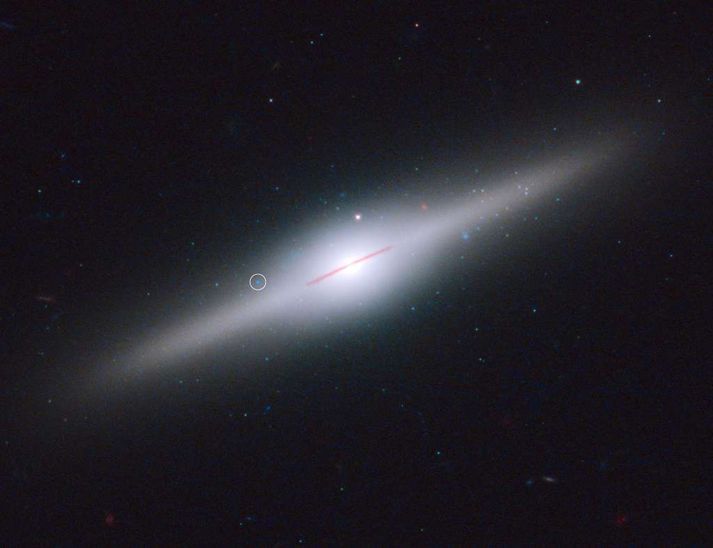 Le cercle blanc indique où se trouve HLX-1 autour de ESO 243-49. © Nasa, Esa, et S. Farrell (University of Sydney, Australia and University of Leicester, UK)