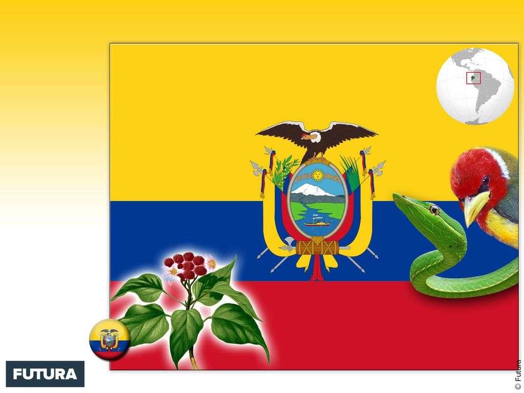 Drapeau : Équateur