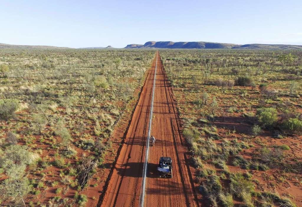 La barrière antichats mesure déjà 44 kilomètres de long © Australian Wildlife Conservancy