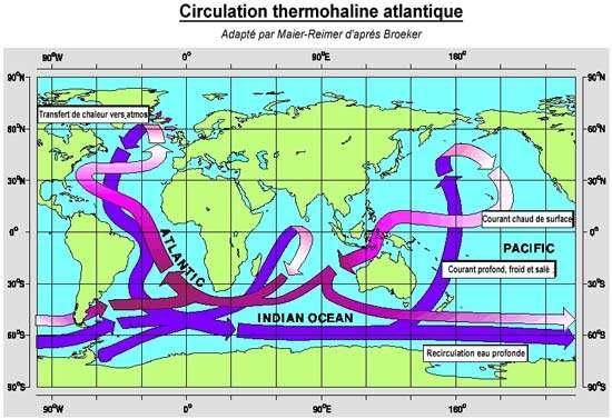 Fig. : 6 - « Le tapis roulant » initié par la plongée dans l'Atlantique d'eaux rendues très denses par le refroidissement. En bleu, la circulation profonde. En rose et mauve le retour en surface
