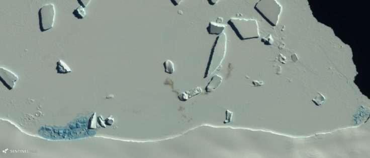 Sur cette image de la mission Copernicus Sentinel-2, les taches de guano sur la glace trahissent la présence d'une colonie de manchots empereurs. © British Antartic Survey, Copernicus Sentinel-2