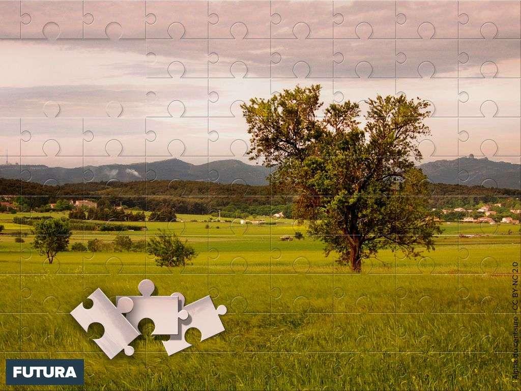 Campagne Aixoise façon puzzle