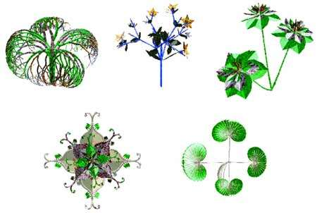 Figures algorithmiques réalisées avec des L-systèmes. © DR