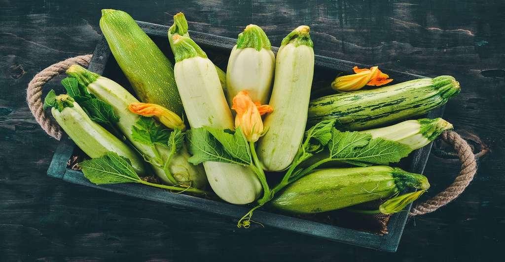 Courgettes blanches plus douces, et vertes. © Yaruniv-Studio, Fotolia