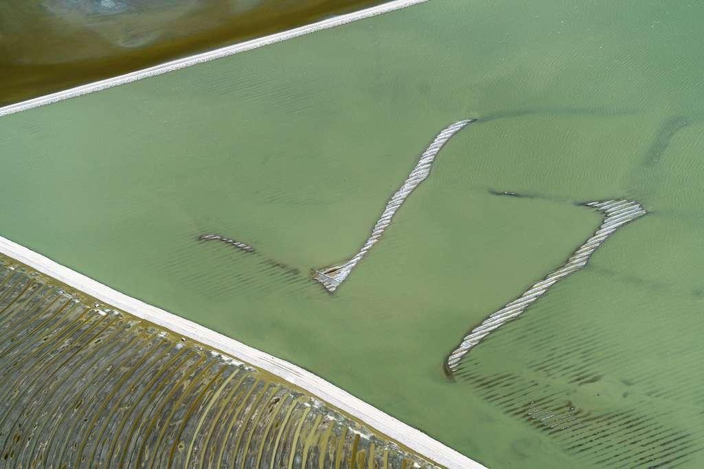 Californie : la croûte de sel du lac Owens