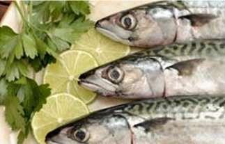 La choline, présente dans le poisson par exemple, réduirait les risques de vieillissement des fonctions cognitives. © Fotolia