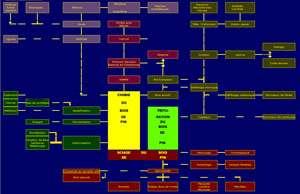 Cliquez sur l'image pour l'agrandir Usages du pin document de l'Institut du pin