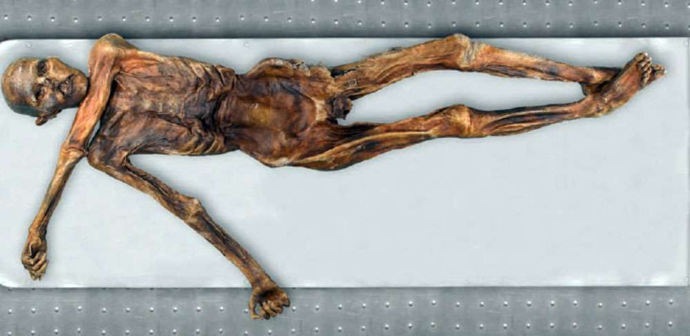 Ötzi vue générale. © Keller A. et alii, New insights into the Tyrolean Iceman's origin and phenotype as inferred by whole-genome sequencing, Nature communications, 2012