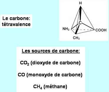 Les acides aminés ont pu se former par réaction entre des dérivés gazeux du carbone et des molécules simples. © DR