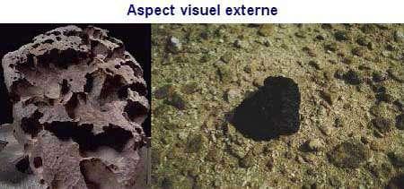 À gauche, la météorite de Willamette, tombée en 1906 dans la vallée de l'Oregon (États-Unis). Elle est exposée au Muséum américain d'histoire naturelle, à New York (AMNH, Hayden). À droite, une météorite tombée dans la plaine d'Oman, en Libye. Elle est facilement identifiable par sa croûte noircie et son poids supérieur aux roches terrestres de même taille. Sa croûte sombre peut toutefois disparaître avec les intempéries. © Document UARK