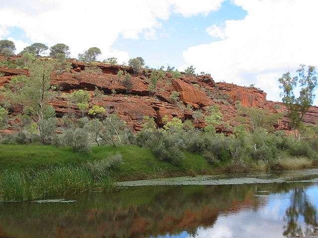La Finke River est l'un des fleuves les plus larges d'Australie-Centrale. C'est aussi le plus vieux de la planète. © Cgoodwin, Wikimedia Commons, CC by-sa 3.0